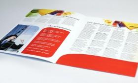 PPU Company Profile
